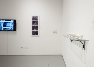 Kathy_High_Installation_View_DSC7449_cc_1200_px